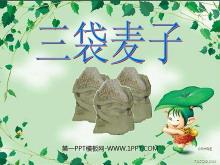 《三袋麦子》PPT课件2