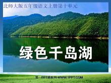 《绿色千岛湖》PPT课件2