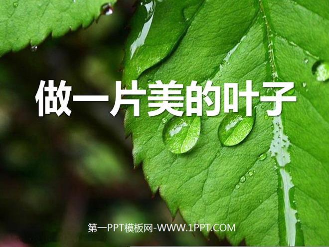 《做一片美的叶子》PPT课件2