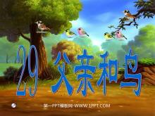 《父亲和鸟》PPT教学课件下载4