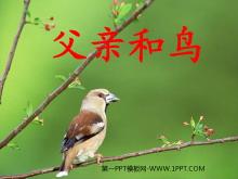 《父亲和鸟》PPT教学课件下载5