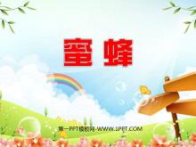 《蜜蜂》PPT教学课件下载5