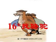 《找骆驼》PPT教学课件下载4
