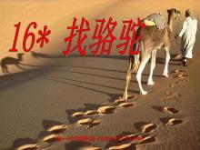 《找骆驼》PPT教学课件下载5