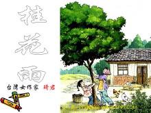 《桂花雨》PPT课件下载5