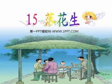 《落花生》PPT课件下载7