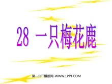 《一只梅花鹿》PPT课件3