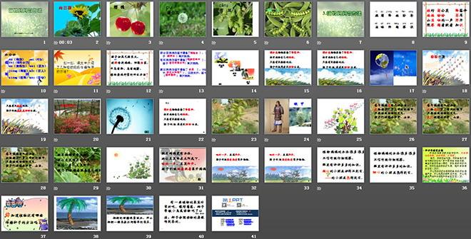 《糖纸教学有植物》PPT办法课件下载4我会剥妈妈课后反思图片