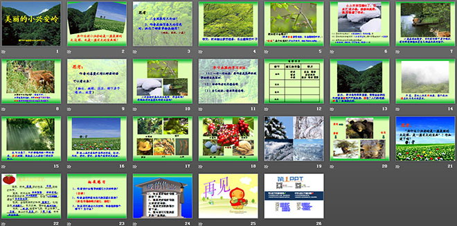 《美丽的小兴安岭》ppt教学课件下载4图片