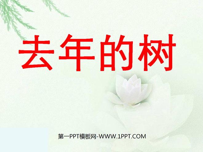 《去年的树》PPT教学课件下载5