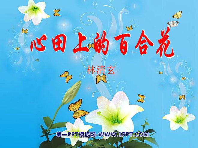 《心田上的百合花》PPT课件4