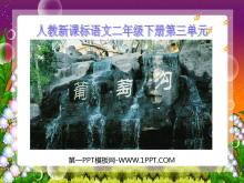 《葡萄沟》PPT课件4