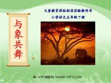 《与象共舞》PPT课件2