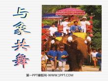 《与象共舞》PPT课件3