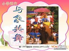 《与象共舞》PPT课件4