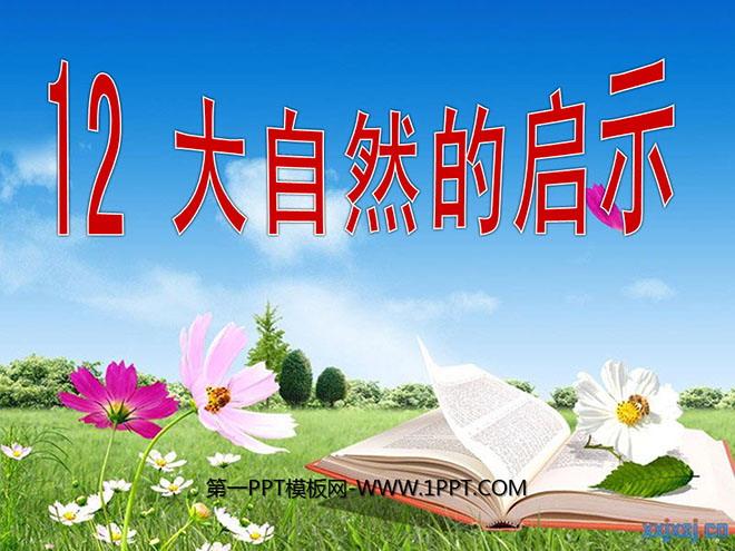 大自然的启示 PPT课件4