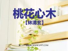 《桃花心木》PPT课件5
