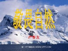 《敬畏自然》PPT课件4