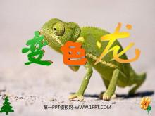 《变色龙》PPT课件下载3