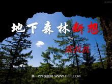 《地下森林断想》PPT课件