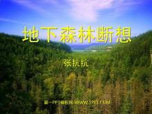 《地下森林断想》PPT课件3