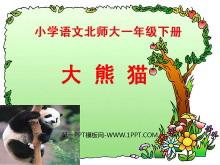 《大熊猫》PPT课件2