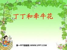 《丁丁和牵牛花》PPT课件2