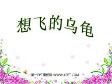《想飞的乌龟》PPT课件2
