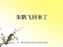《朱�q飞回来了》PPT课件