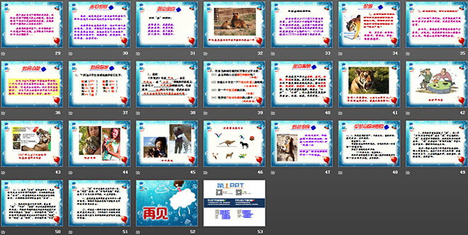《华南虎》PPT分子2-第一PPT和课件课件原子图片