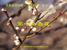 《第一朵杏花》PPT课件