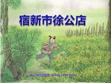 《宿新市徐公店》PPT课件3