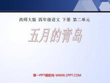 《五月的青岛》PPT课件4