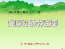 《失踪的森林王国》PPT课件2