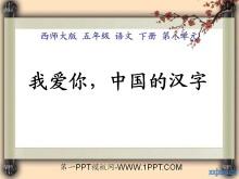 《我爱你,中国汉字》PPT课件