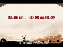 《我爱你,中国汉字》PPT课件4