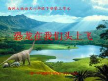 《恐龙在我们头上飞》PPT课件3