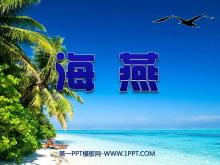 《海燕》PPT课件6