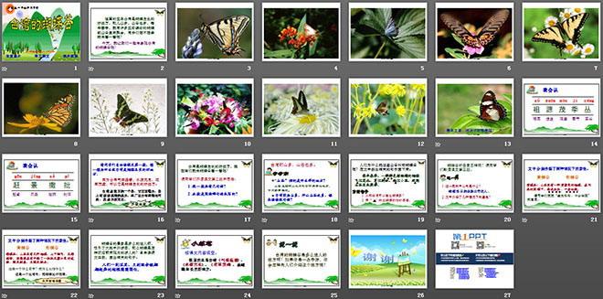 台湾的蝴蝶谷 PPT课件2