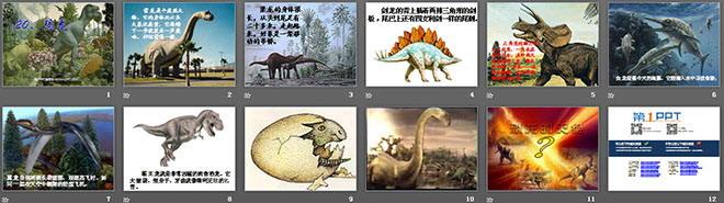 《恐龙》PPT课件