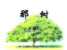 《那树》PPT课件5