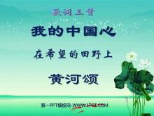 《我的中国心》《在希望的田野上》《黄河颂》PPT课件