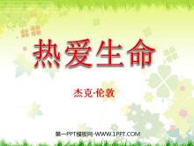 《热爱生命》PPT课件4