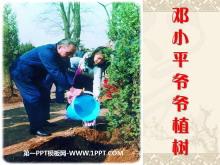 《邓小平爷爷植树》PPT课件3