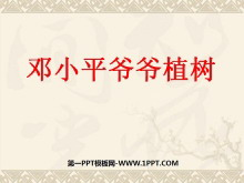 《邓小平爷爷植树》PPT课件4