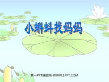 《小蝌蚪找妈妈》PPT课件3