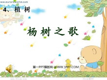 《杨树之歌》PPT课件4