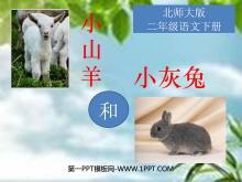 《小山羊和小灰兔》PPT课件4