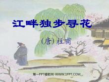 《江畔独步寻花》PPT课件3