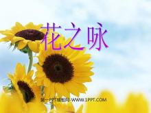 《花之�》PPT�n件3